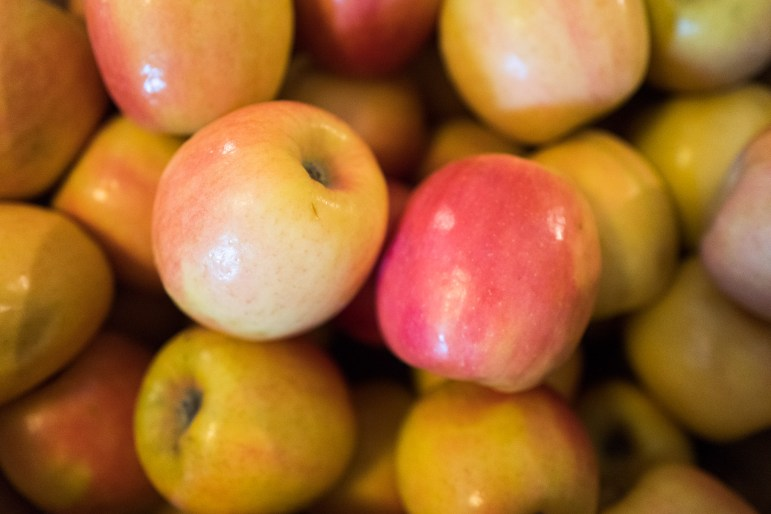 Pink lady apples fill a large container at Urban Farm Stand. Photo by Scott Ball.