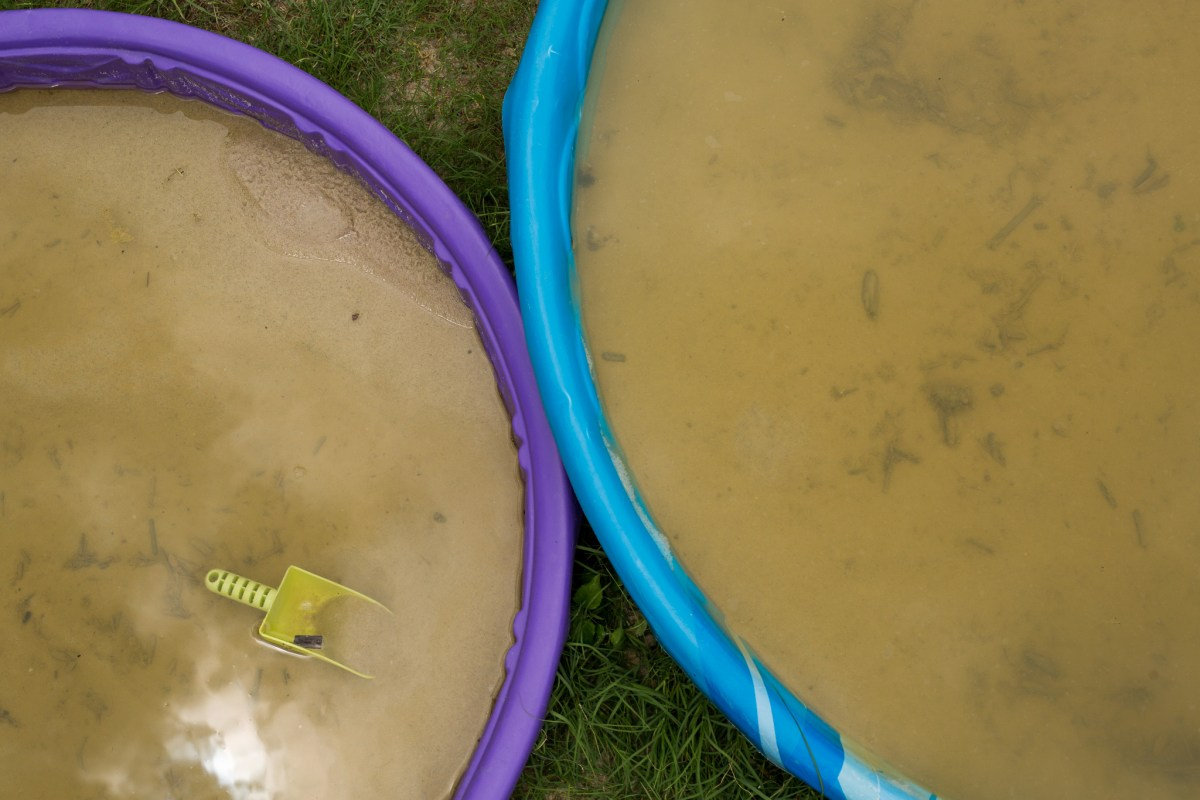 Standing water collects in sandboxes at a neighborhood playground in the Terrell Hills neighborhood. Photo by Scot Ball.