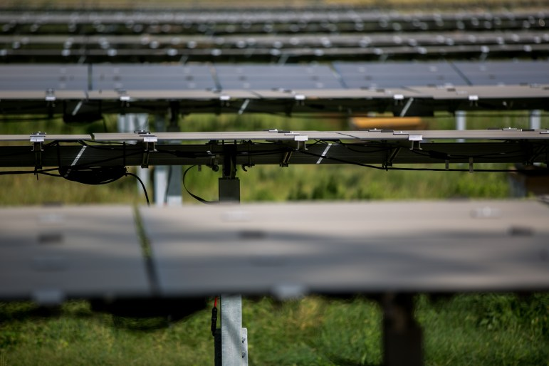The 11,280 solar panels have the capacity to generate 1,212kW of energy. Photo by Kathryn Boyd-Batstone.