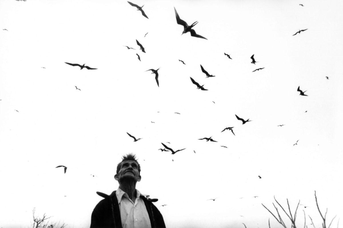El señor de los pájaros. Photo by Graciela Iturbide.