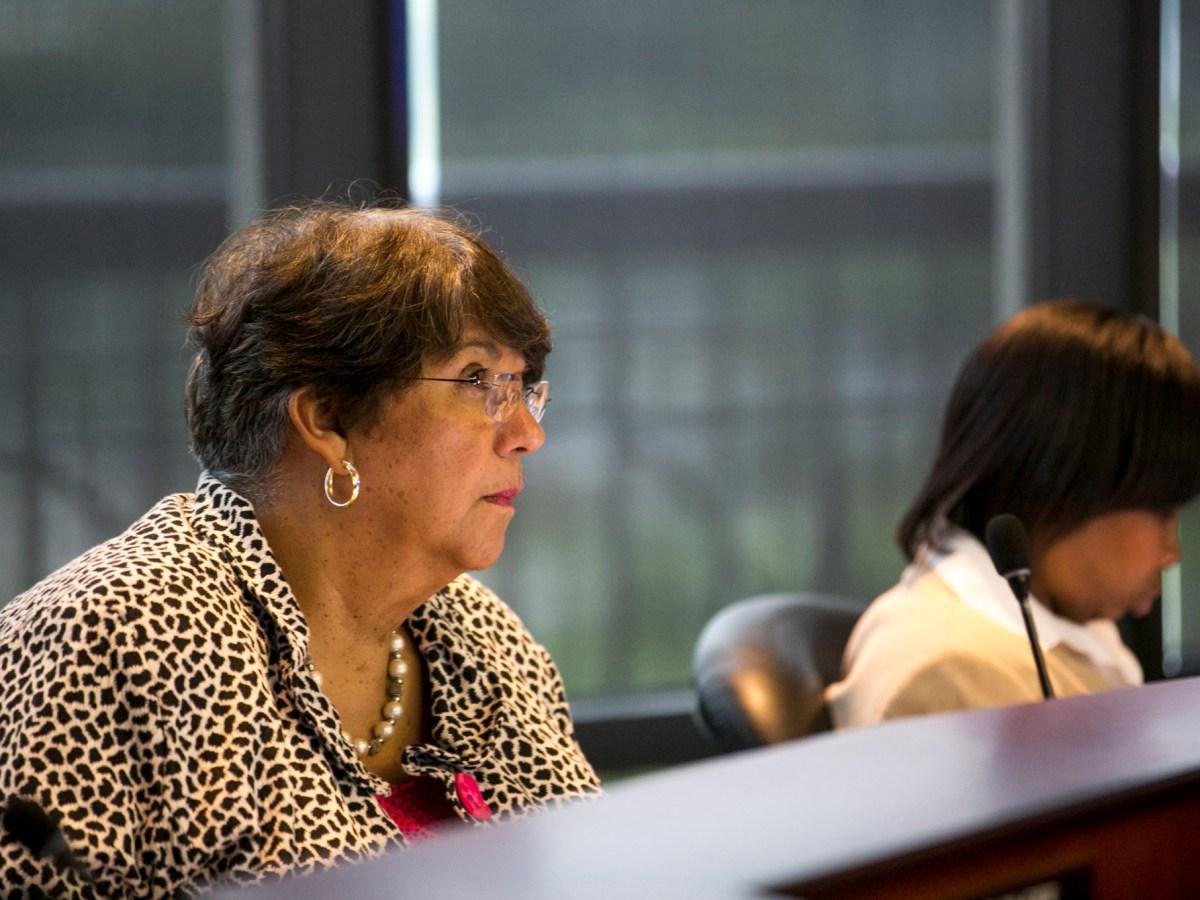 SAWS Vice Chair Pat Jasso. Photo by Kathryn Boyd-Batstone.