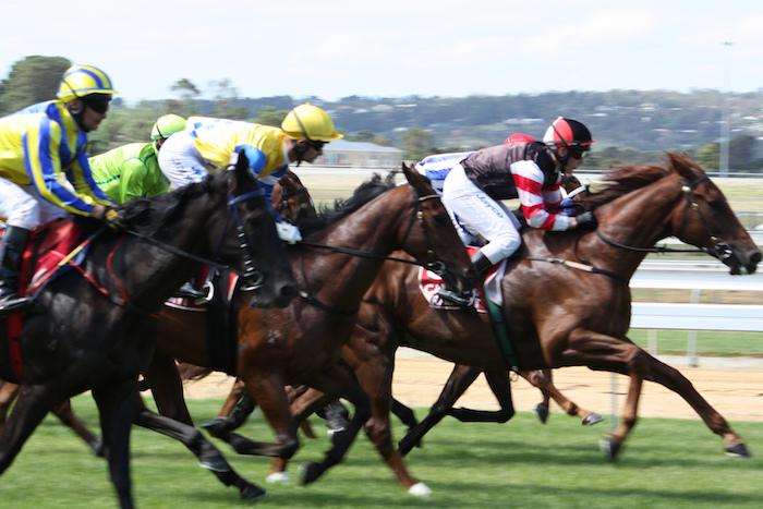 Horse race at Mornington. Photo by Jessica Cross via Flickr.