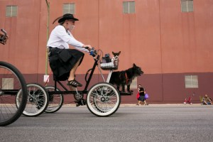 A man rides down Broadway Street with his two dogs during Síclovía. Photo by Kathryn Boyd-Batstone.