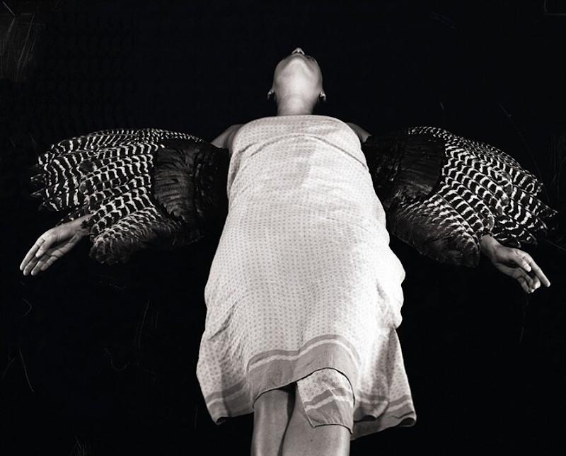 Bird of Flight, 2012. Photo by courtesy of Jenelle Esparza.