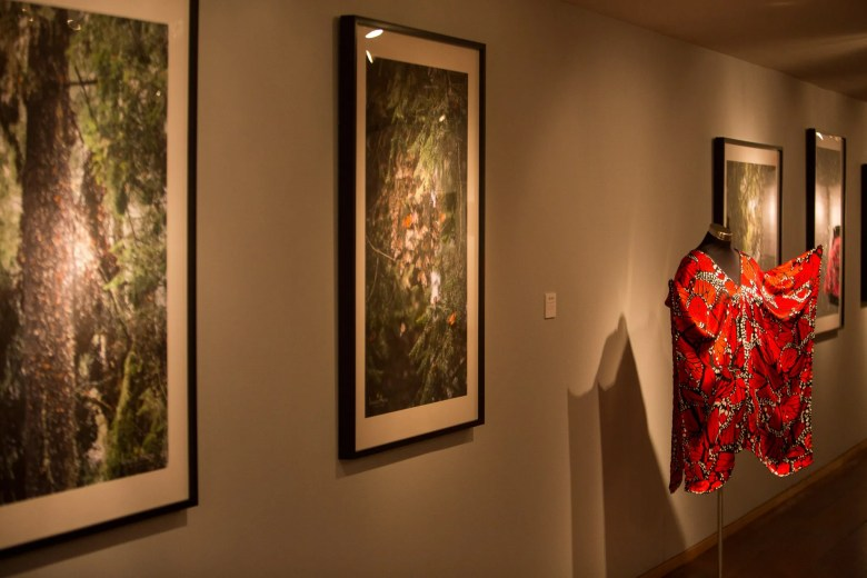 Butterfly-inspired wardrobes fill the room along with photographs at Instituto Cultural de México.