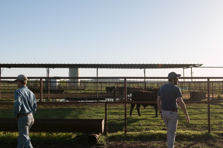 (From left) El Capote Ranch ranch hand Kaleb Wagner and El Capote Ranch owner and Agex Inc. Chief Executive Officer Wendel Thuss watch the cows on the ranch.