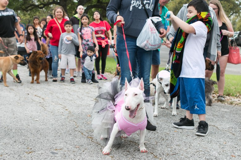 Khloe arrives in style to the 5th Annual Bark in the Park – Perrito Grito in Rosedale Park.