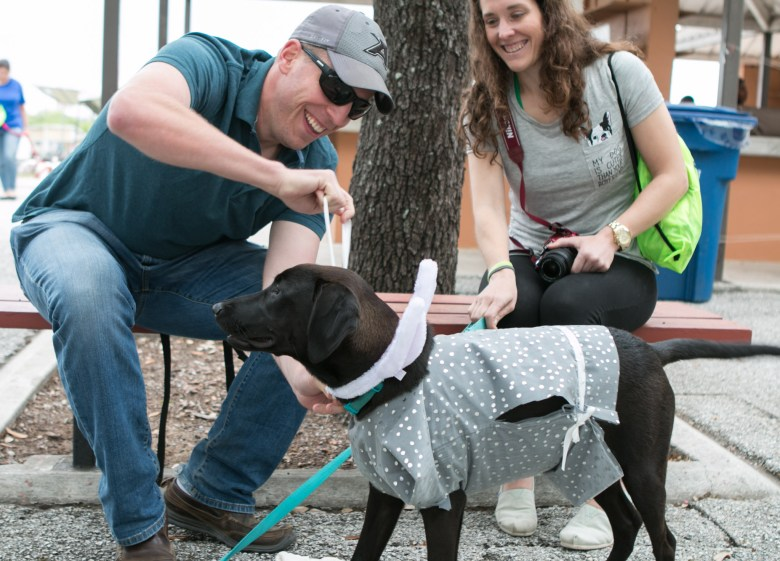 Jordan Yokley, left, and Caitlyn Mooney accessorize Alex with bunny ears at the 5th Annual Bark in the Park – Perrito Grito in Rosedale Park.
