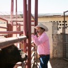 Ruben Carvala watches the horses before A Day in Old Mexico & Charreada.