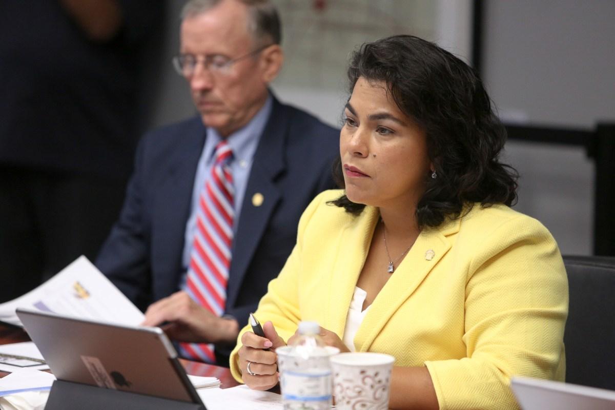 Councilwoman Rebecca Viagran (D3).