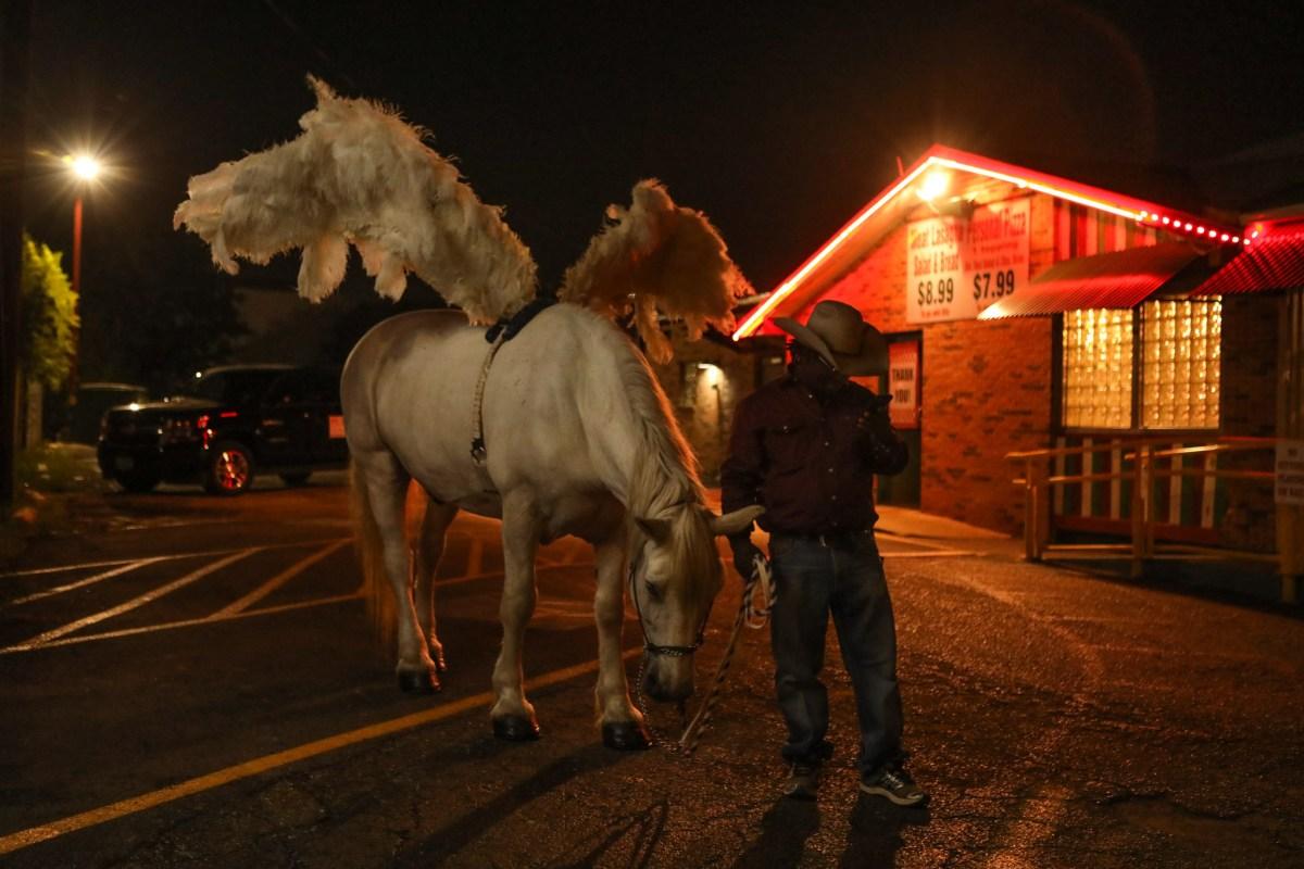 Jamar McCracken dresses his horse as a pegasus for the PRIDE Bigger Than Texas Parade.