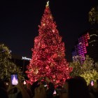 Travis Park is lit up during the 33rd Annual H-E-B Christmas Tree Lighting celebration.