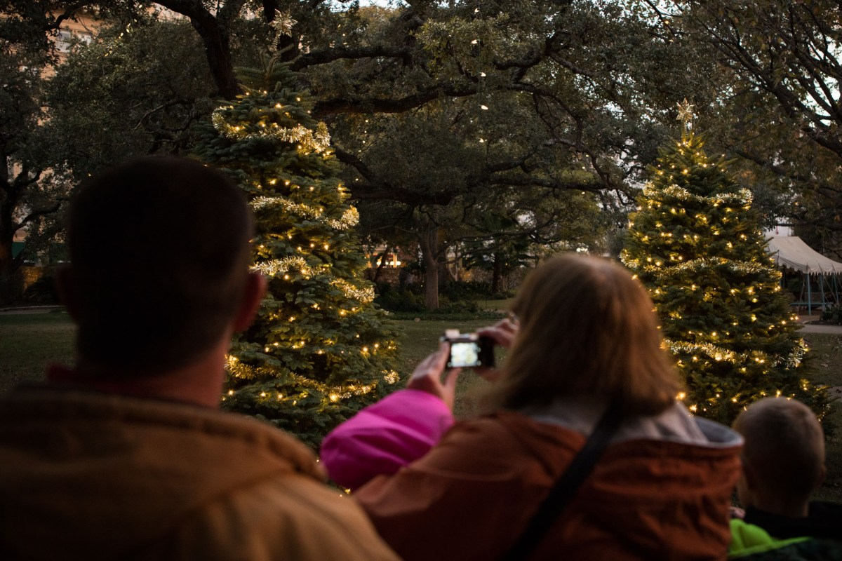 Christmas Trees are lit up at the Alamo.
