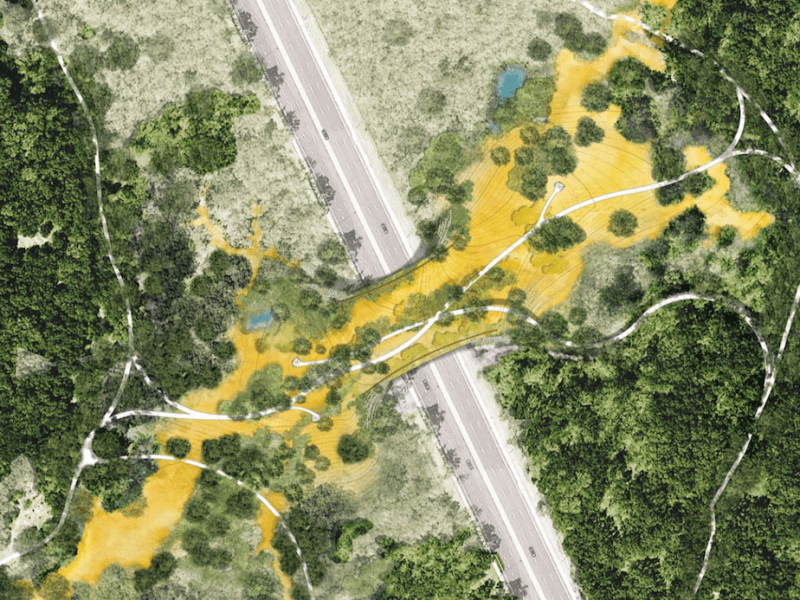 A rendering of the planned Phil Hardberger Park Land Bridge