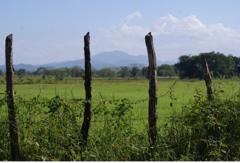 A view of my site, a small village situated on the border of the Dominican Republic surrounded by rice paddies and mountains.