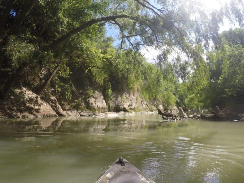 Willow limbs dangle over the San Antonio River at Saspamco.