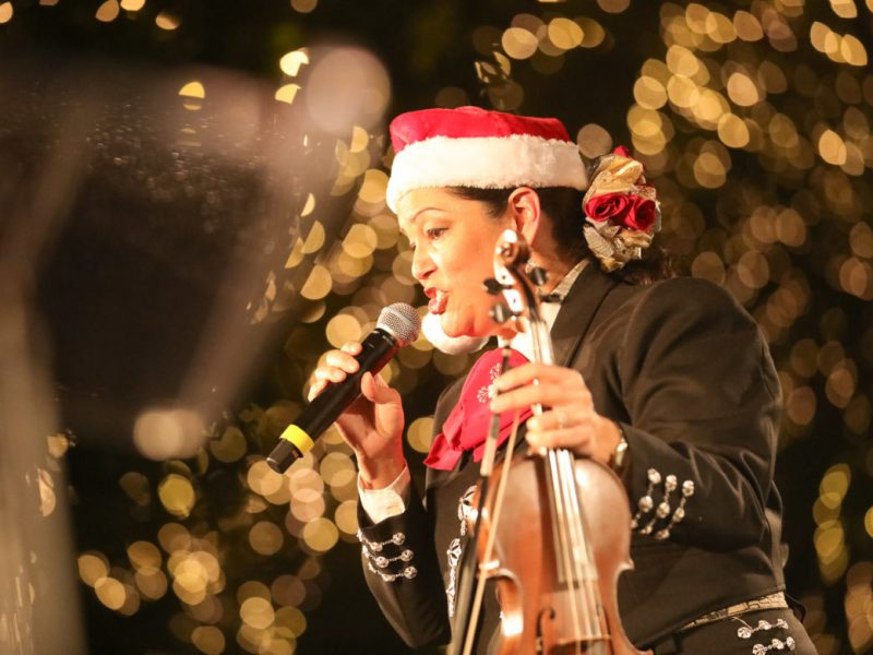 Mariachi Los Alteñas performs following the tree lighting at Travis Park.