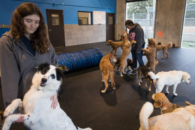 (from left Employees Samantha Lea and Natalie Aguigui hug dogs in the large dog indoor area.