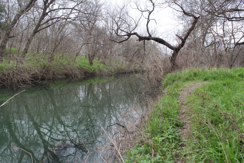 Leon Creek flowing alongside the trail.
