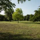Oak Hills Park.