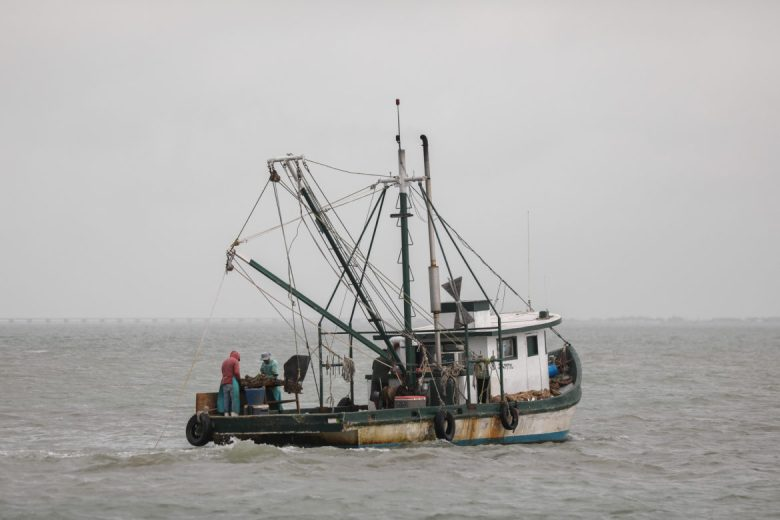 Oyster boats are often converted from shrimp vessels during prime oyster season.