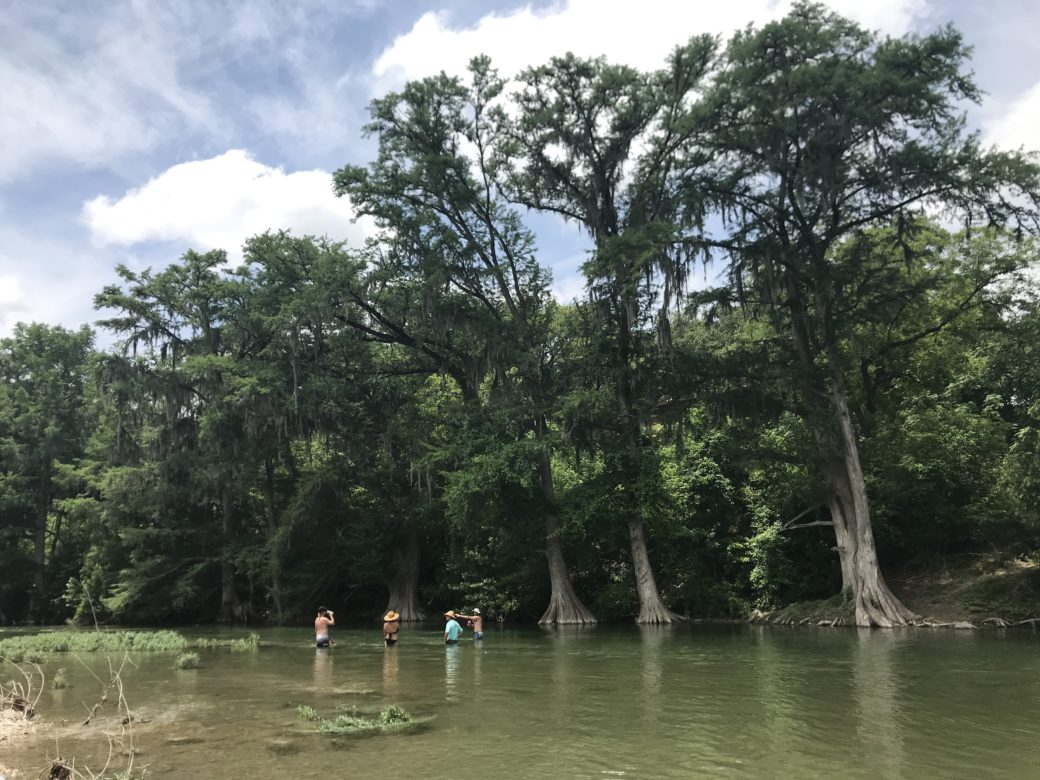 Kayakers pause underneath cypress trees on the Guadalupe River.