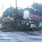 A tree fell on Broadway Street as a result of the hail storm.