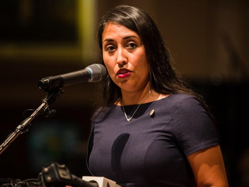 Councilwoman Adriana Rocha-Garcia (D4)