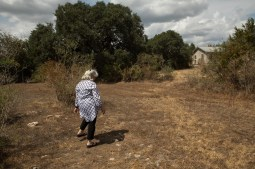 Deborah Sibley walks from the olive orchard on her property to her studio.