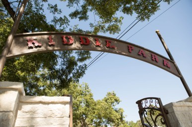 The signage of the Kiddie Park at the San Antonio Zoo.