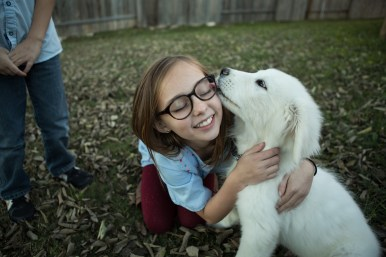 Adelaide Sargeant, 11, plays with Alpine the puppy in her backyard.