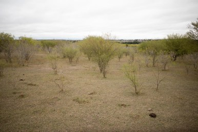 A swath of land located at Redbird Ranch is advertised for sale.