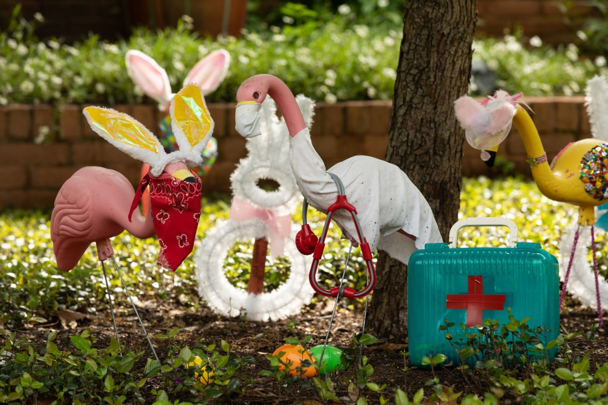 Flamingo garden decorations are outfitted with Easter Bunny ears and coronavirus masks in the Oak Park - Northwood neighborhood.
