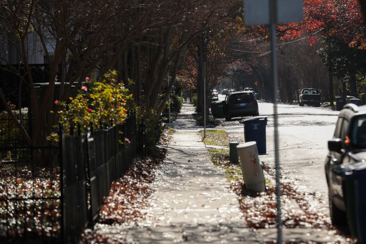 Fall leaves drop throughout the historic King William neighborhood near downtown, where many are forcefully pushed aside by gasoline-propelled blowers.