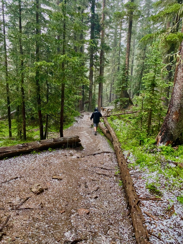 The author and Cacteye head for shelter as a hail storm intensifies at high altitude.