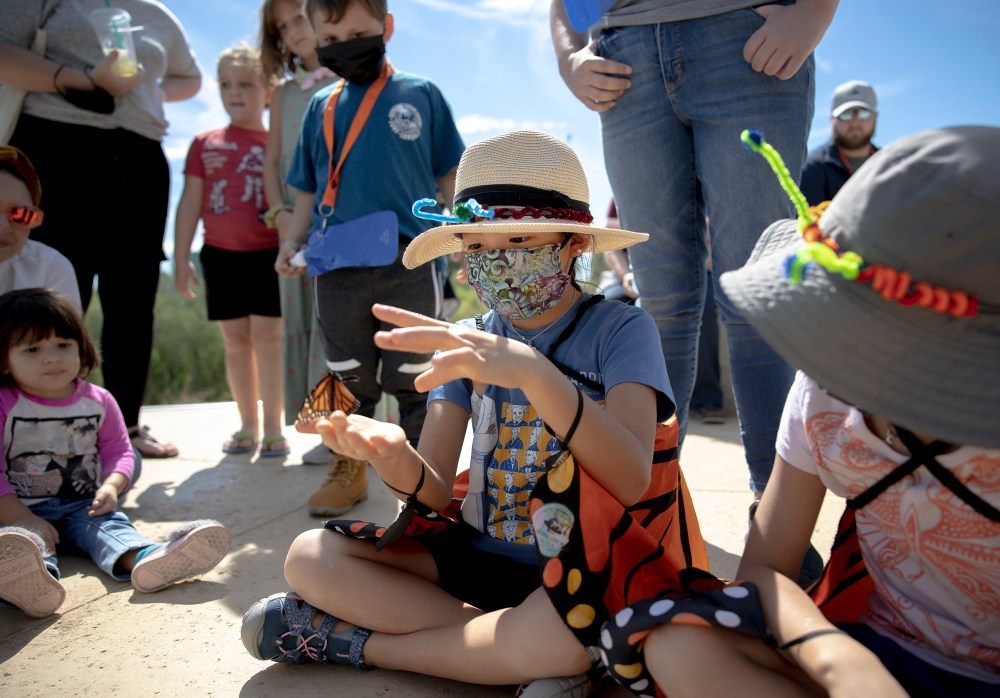 Children gather to watch a butterfly release during the Monarch Butterfly and Pollinator Festival at Confluence Park on Saturday.