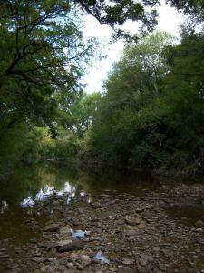 Photo of Salado Creek, near the Oakwell Trailhead