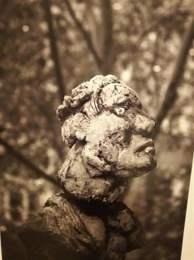 Viyananın heykelleri 12