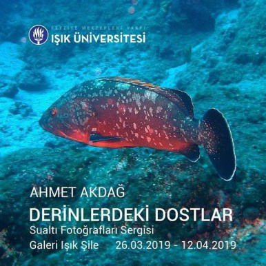 Ahmet Akdağ 6