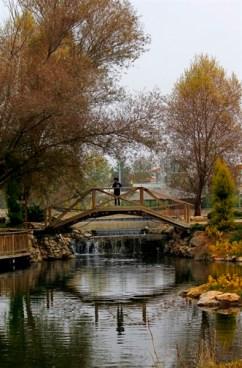 Uçarı Göl Park 16