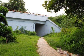 A secluded path in one of Delhi's most congested areas reveals a hidden life.