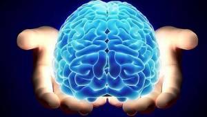 La mayoría de nosotros pensamos igual que nuestro entorno; reaccionamos a éste. Sin embargo tenemos que separarnos de él, ir a la soledad y crear un nuevo ideal de nosotros mismos con una nueva realidad y mantener ese sueño vivo y repetirlo una y otra vez para que el cerebro empiece a rastrear y estructurar esa realidad antes de que realmente la experimentemos con los sentidos.