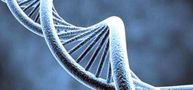 Los Doce Filamentos Espirituales del ADN