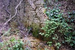 Trekking alla scoperta delle bellezze naturali del Sannio