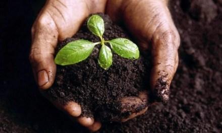 """Campania: al via """"Agricoltura 2.0"""", progetto a sostegno del territorio"""