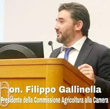 """Gallinella in visita presso la Cooperativa """"Sole e Sapori"""" di San Bartolomeo in Galdo"""