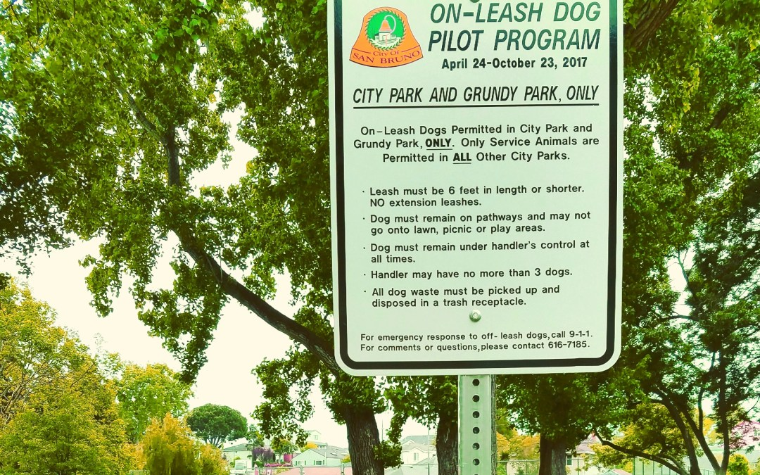 San Bruno Dog Day at City Park