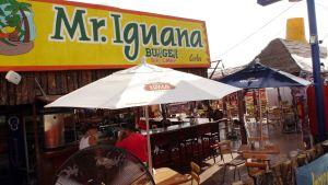 Mr Iguanas San Carlos 4