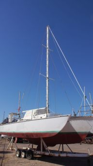 Vela Lisa Jim Brown 31