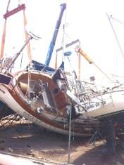 newton-marina-san-carlos-monohull